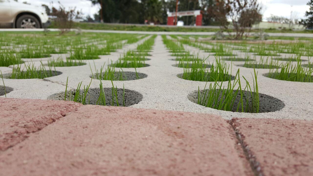 Green block lajas quilmes for Poner piedras en el jardin